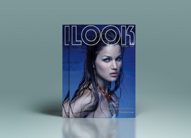 Look LA COVERS